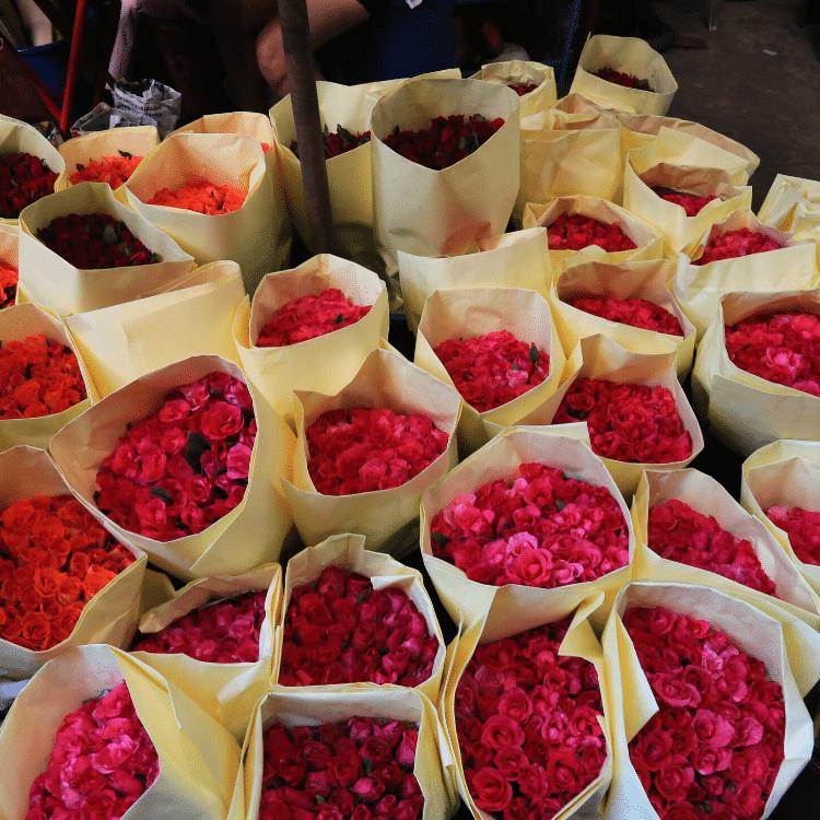 Stupendi fiori ovunque!