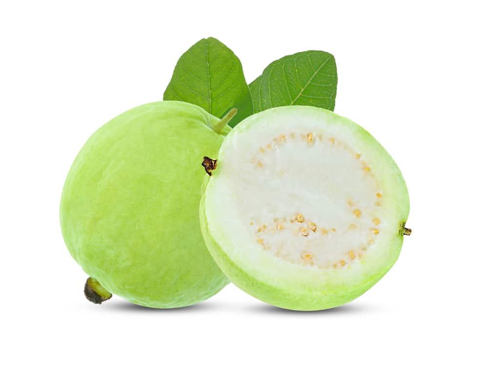 Guava