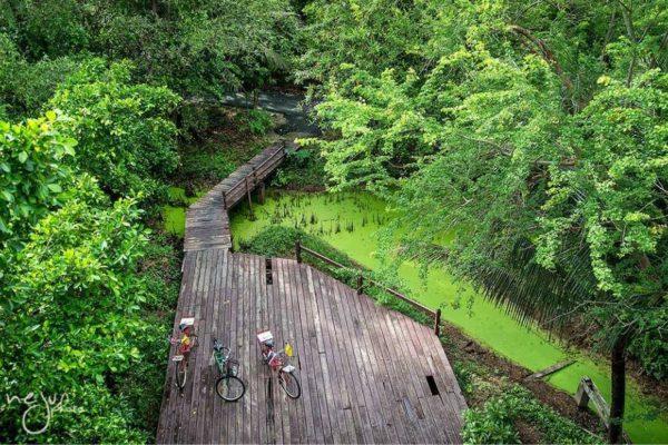 Bang Krachao bird reservoir